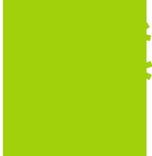 Descubre las plantas para sembrar en semilleros en invierno que trabajamos - Surdeplant